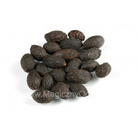 Saw Palmetto extrakt 45% - Serenoa repens - 100g