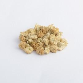 Ruman rímsky - harmanček - Chamaemelum nobile - 50g