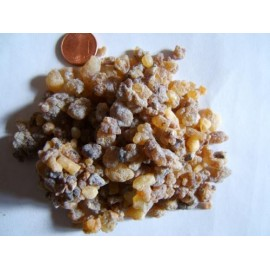 Kadidlovník - Indické Kadidlo - Boswellia serrata - 50g