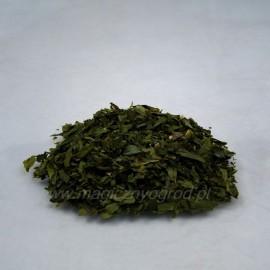 Cesnak medvedí list - Allium ursinum - 100g sekaný