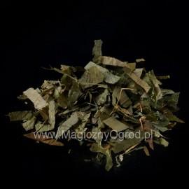 Listy Epimedium - Horny Goat Weed - Epimedium sagittatum - 50g sekaný