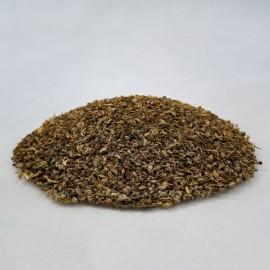 Aminek Egyptský plod - Ammi visnaga - 50g vcelku