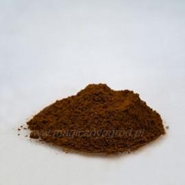 Čaga - Ryšavec šikmý - Inonotus obliquus - 100g mletý