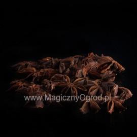 Aníz hviezda - Illicium verum - 250g vcelku