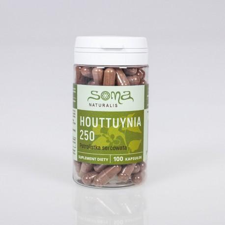 Houttuynia cordata kapsule 250 mg x 100 kapsúl