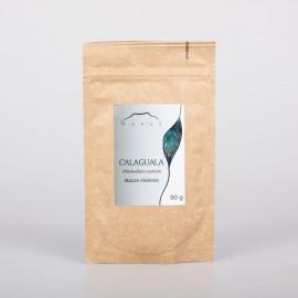 Calaguala podzemok - Phlebodium aureum - 50g mletý