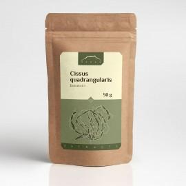Cissus quadrangularis ekstrakt 4:1 - 50g