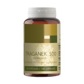Kozinec blanitý koreň 500 mg x 100 kapsúl - Astragalus membranaceus