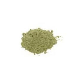 Mladý zelený jačmeň - Hordeum vulgare - 250g