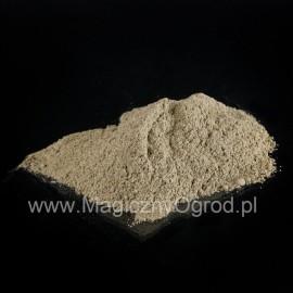 Carqueja - Baccharis genistelloides - 250g mletý