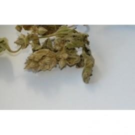 Herbal tops